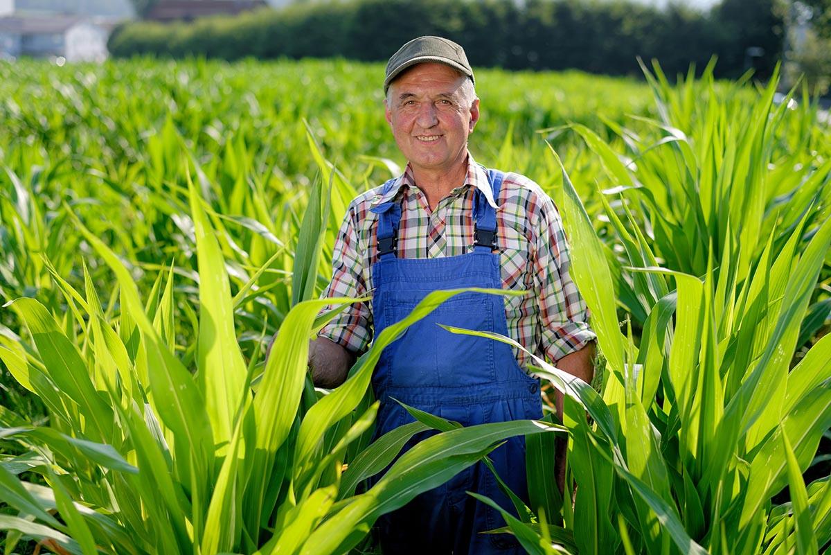 γεωργός χωράφι αρχοντής